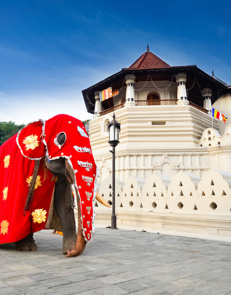 Temple of the Tooth Kandy